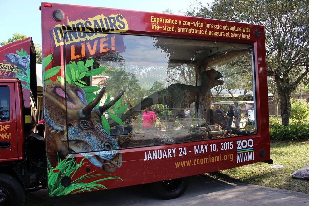 Ty-Ron-asaurus Rex Magill is heading to Zoo Miami