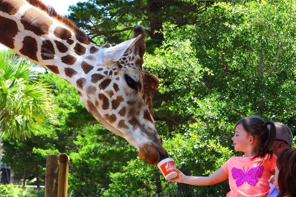 Gulf Breeze Zoo Botanical Gardens