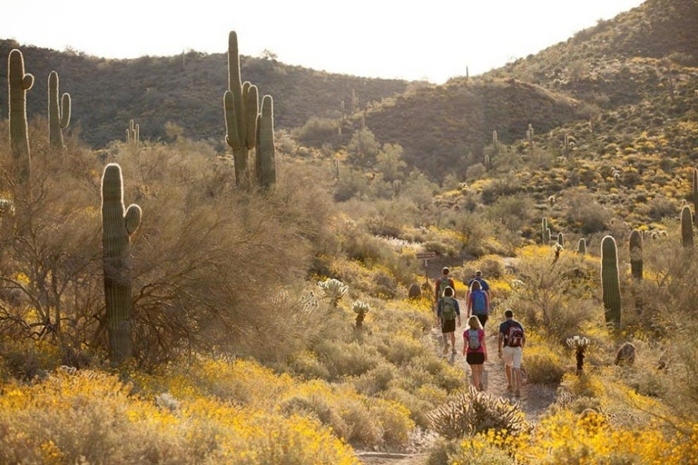 Phoenix Shines As Warm Winter Destination