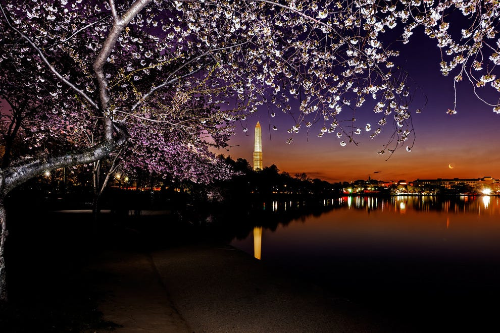 10Best Things to Do in DC Before You Die