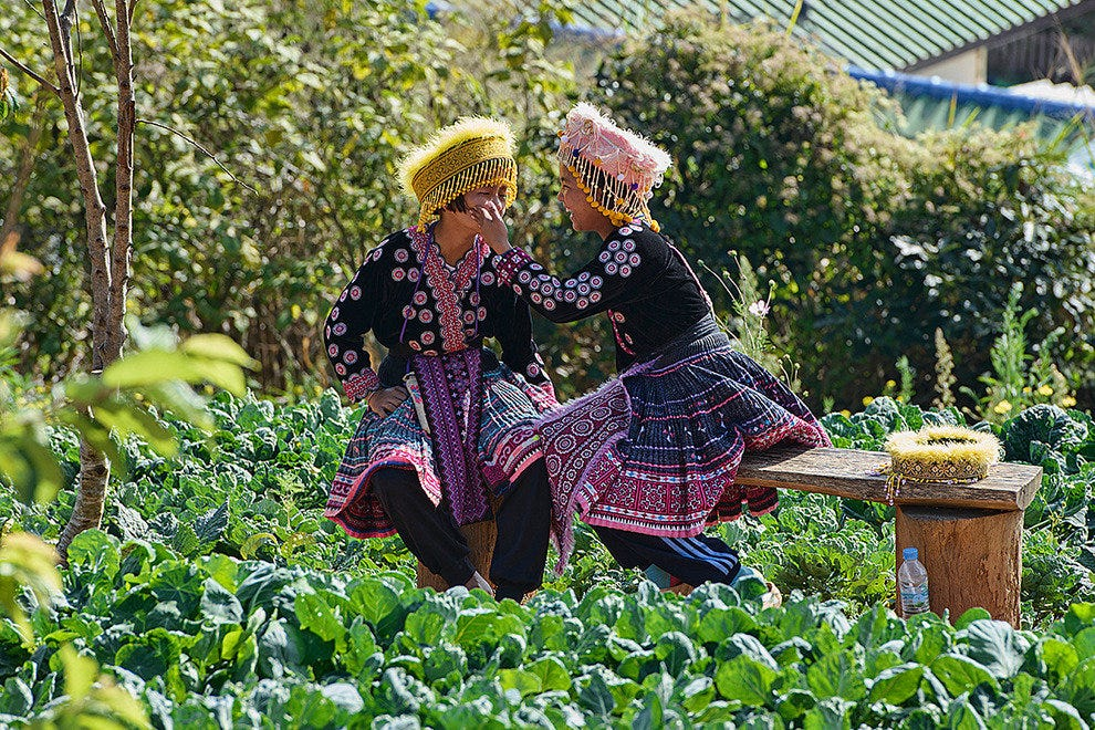 Hmong girls in the cabbage patch