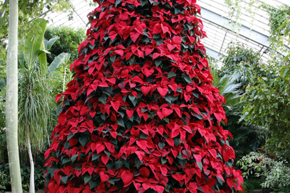 Birmingham Botanical Gardens Birmingham Attractions Review 10best Experts And Tourist Reviews