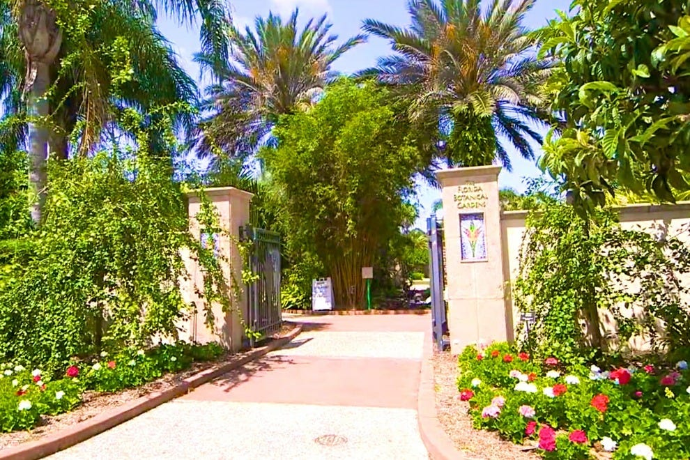Florida Botanical Gardens St Petersburg Clearwater Attractions Review 10best Experts And