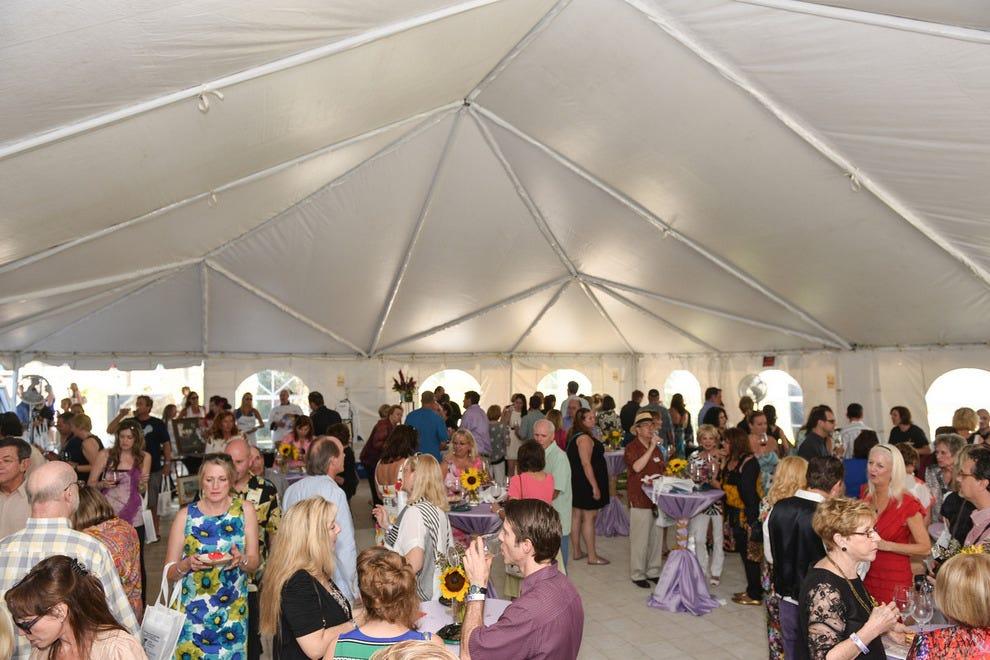2014年Los Vino de Dali活动的客人混合和混合