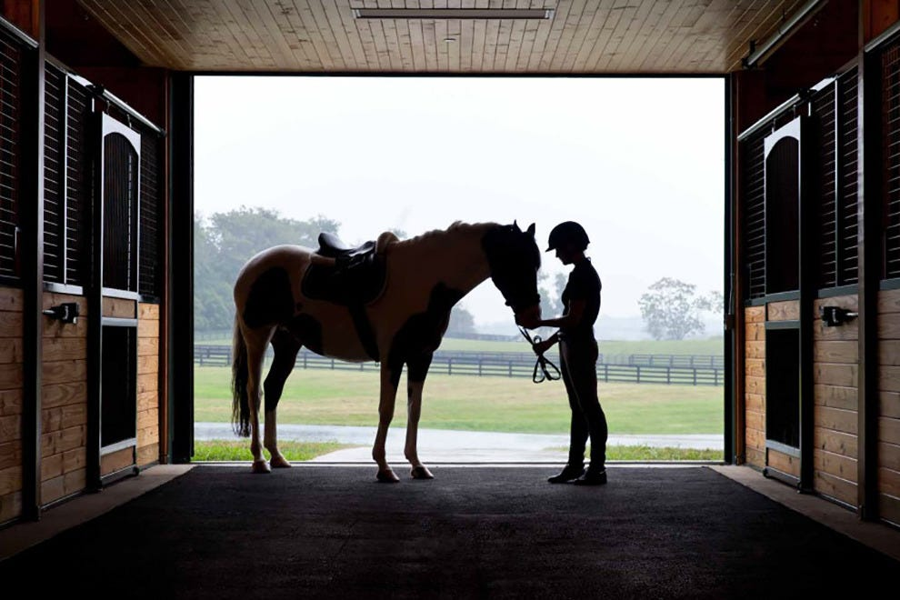 Stay in the heart of Virginia's horse country at Salamander Resort