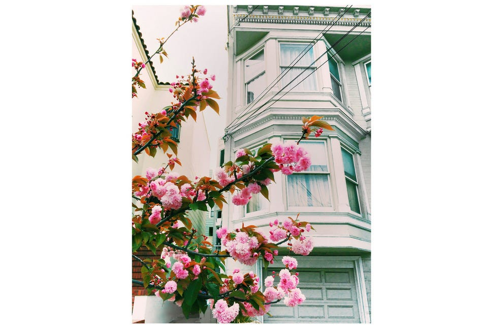 Picturesque Victorian home in Noe Valley