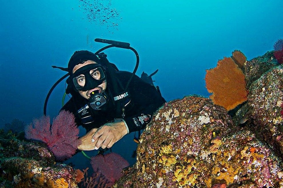 Manta Scuba Diving Cabo San Lucas Attractions Review 10best