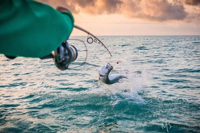 Fishing Charters in Fort Myers