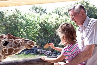 A Closer Look at World-Famous Brevard Zoo and Its Special Events