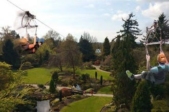 Queen Elizabeth Park Celebrates 75 Years with Thrilling Zipline