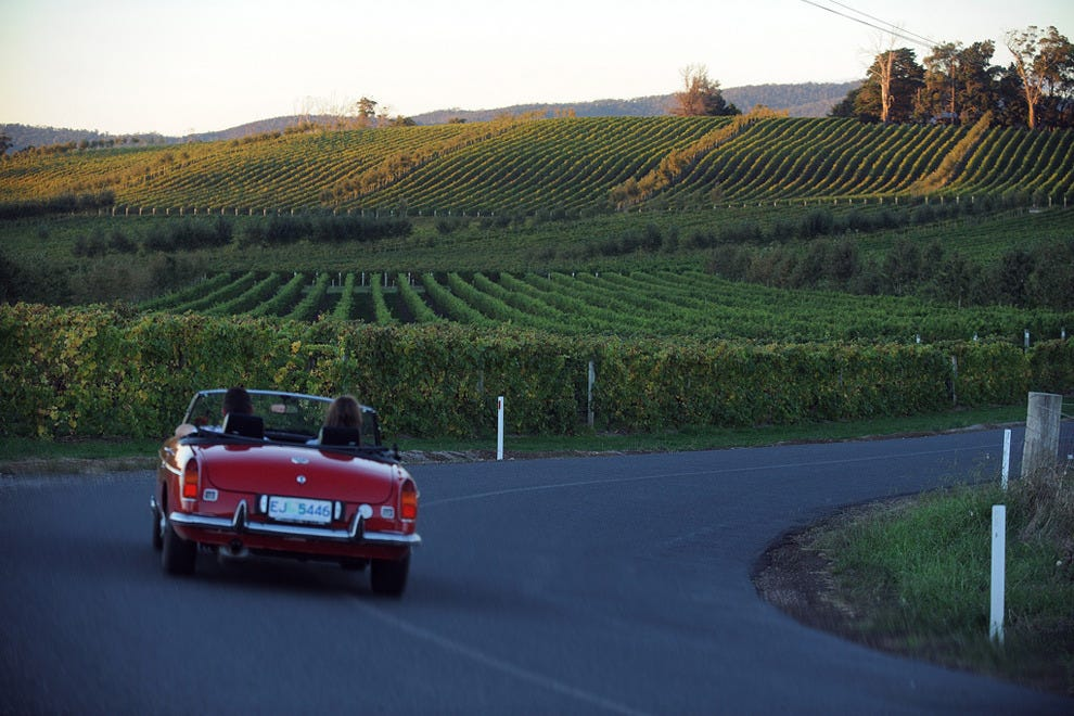 Head down under to Tasmania's wine route