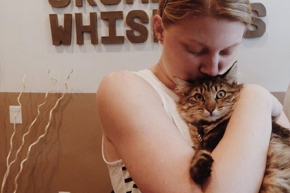 Cuddles and drinks await at this cozy cat cafe in Georgetown