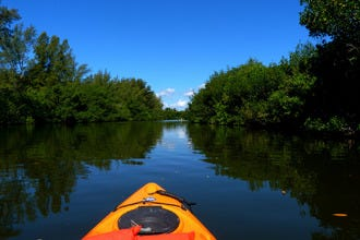 Kayak through an Island-Dotted Lagoon in Florida