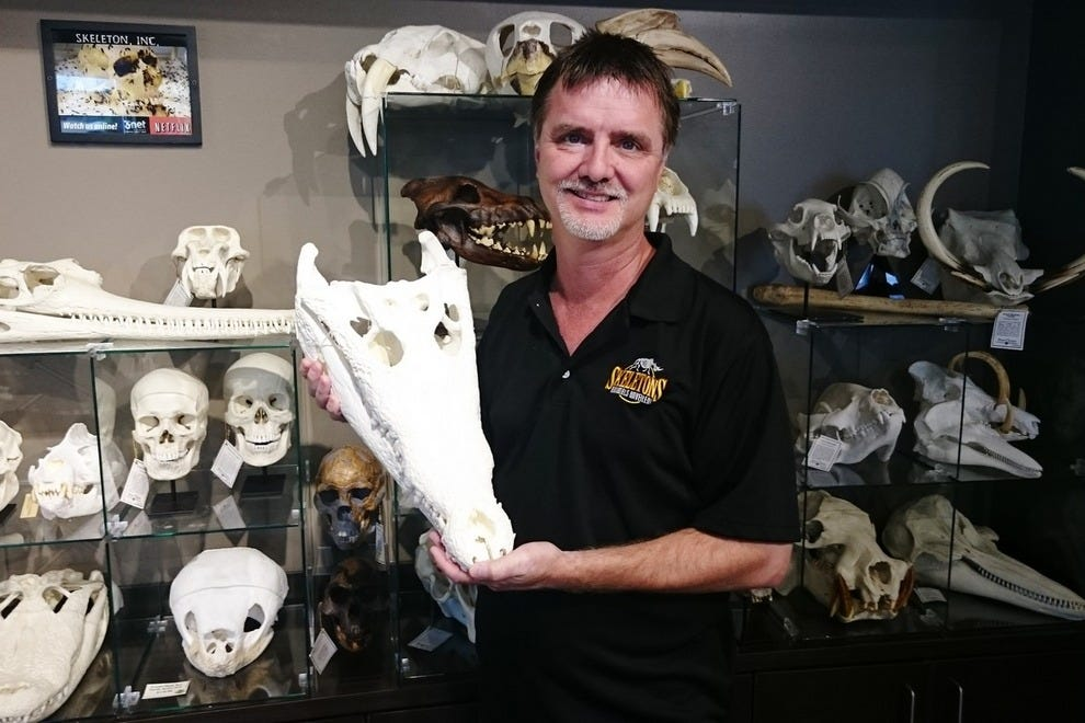 Owner/Founder Jay Villemarette, Sr., holds a crocodile skull. Specimens pictured here are for sale in the museum shop.