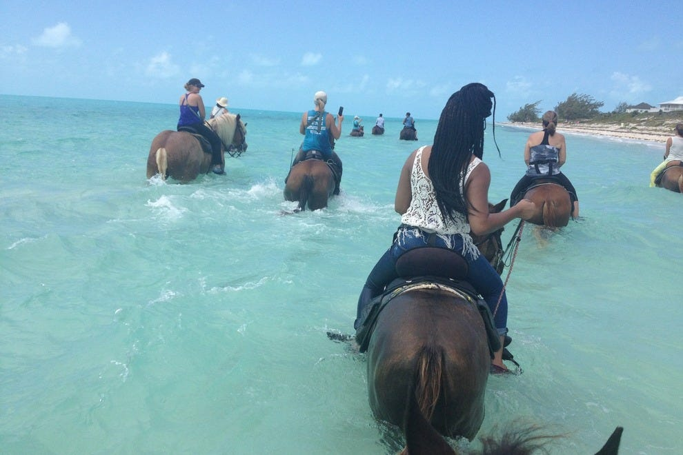 Taking to the sea with Provo Ponies