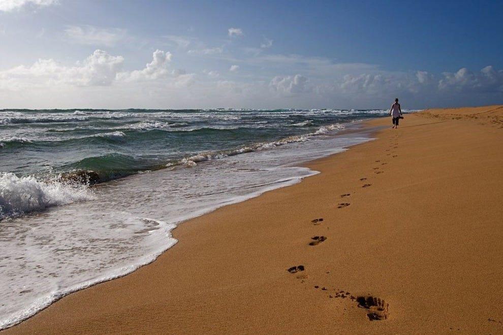 海贝套房的海滩既偏远又私人。