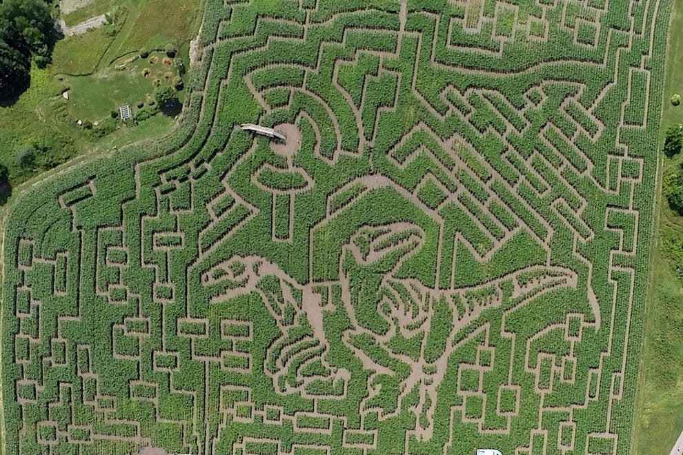 2014 Great Vermont's Corn Maze theme