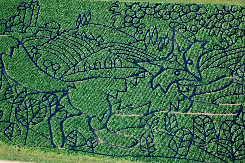 The Fox and the Grapes 2015 maze