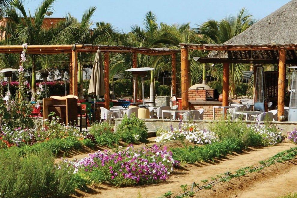 Garden restaurant cabo san lucas restaurants review 10best experts and tourist reviews for Best restaurants in garden city