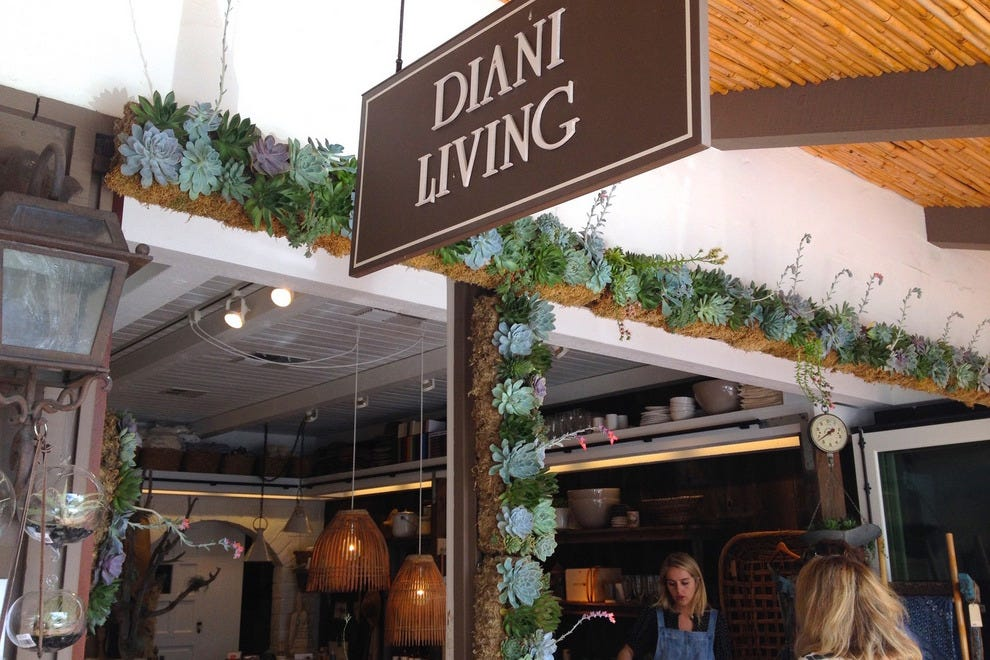 Visit DIANI Living for fresh succulents, great gifts and chic home goods