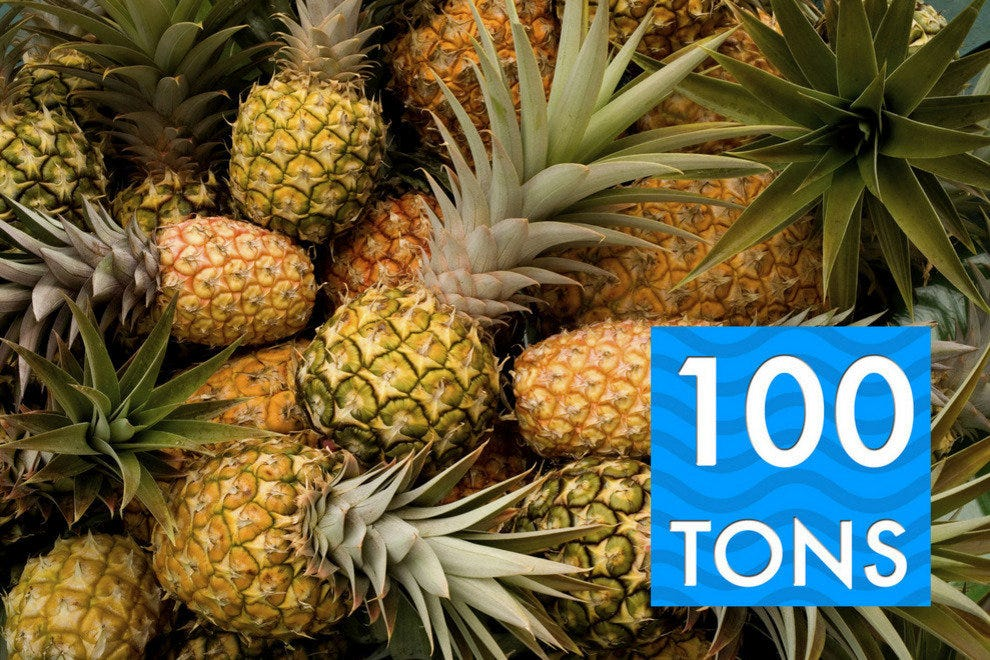 Carnival Breeze goes through 100 metric tons of pineapple annually, mostly in frothy, tropical drinks.