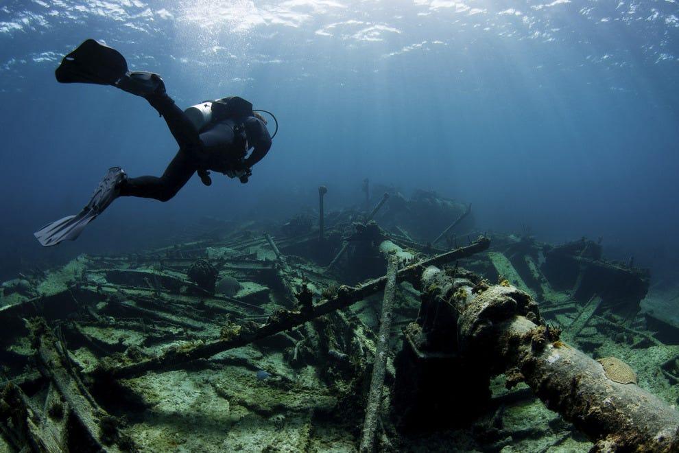 Best Underwater Attraction Winners 2016 10best Readers