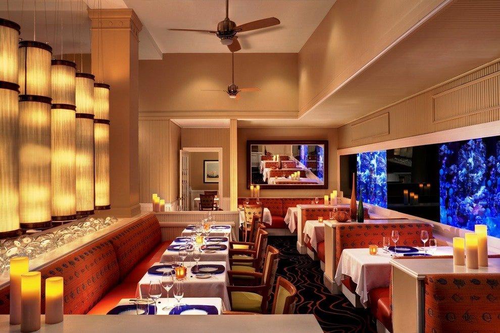 Best New Restaurants St Pete