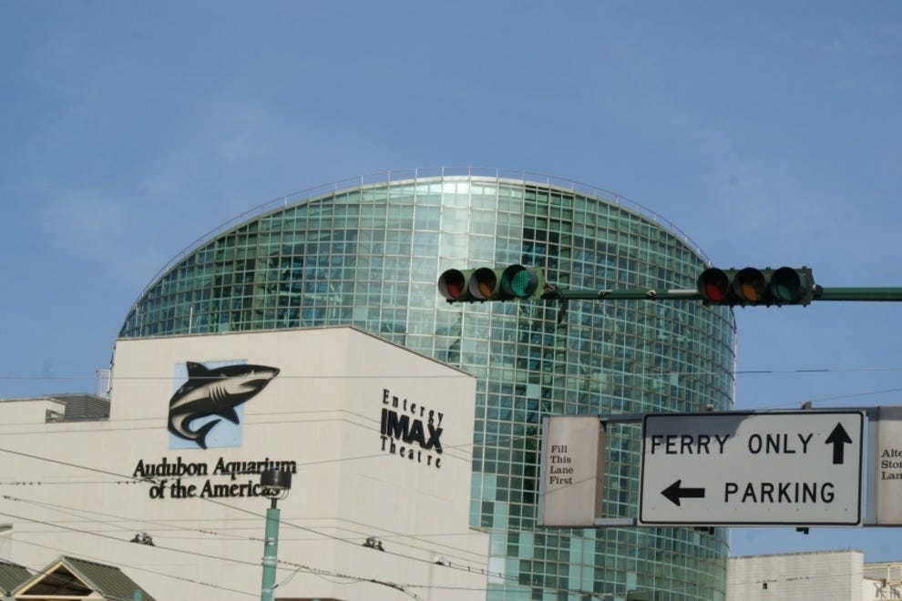 Audubon aquarium of the americas new orleans attractions for Things to do today in new orleans