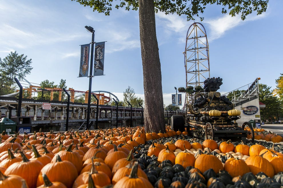 The massive pumpkin patch at Cedar Point