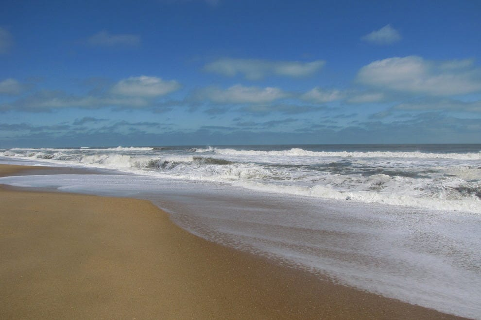 Dog Friendly Beaches Nc