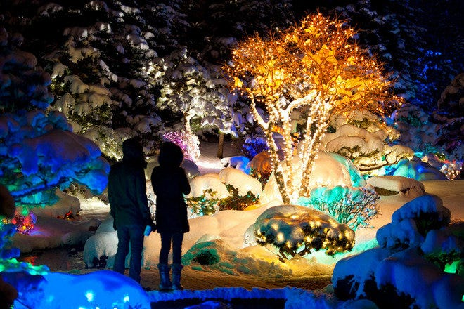 Holiday Attractions in Denver