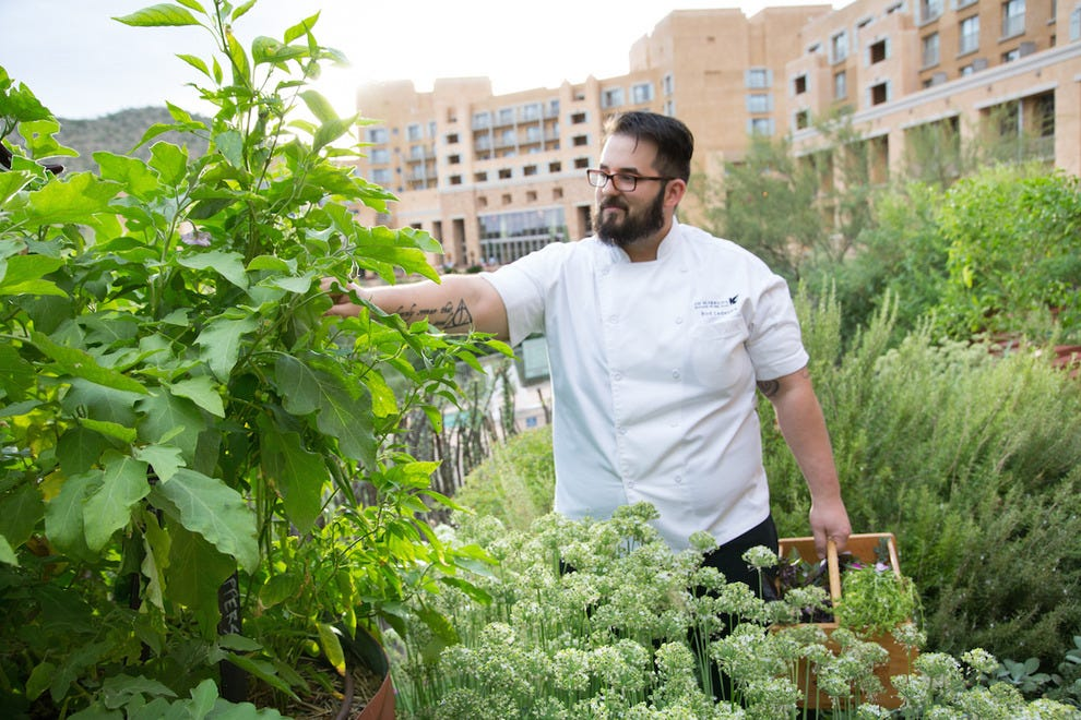 Chef Roderick LeDesma in the Chef's Garden at JW Marriott Tucson Starr Pass Resort & Spa