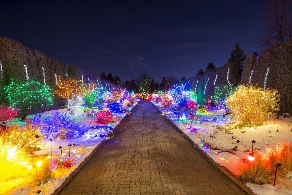 Blossoms of Light Denver Botanic Gardens - Blossoms Of Light Denver Botanic Gardens: Denver Attractions Review