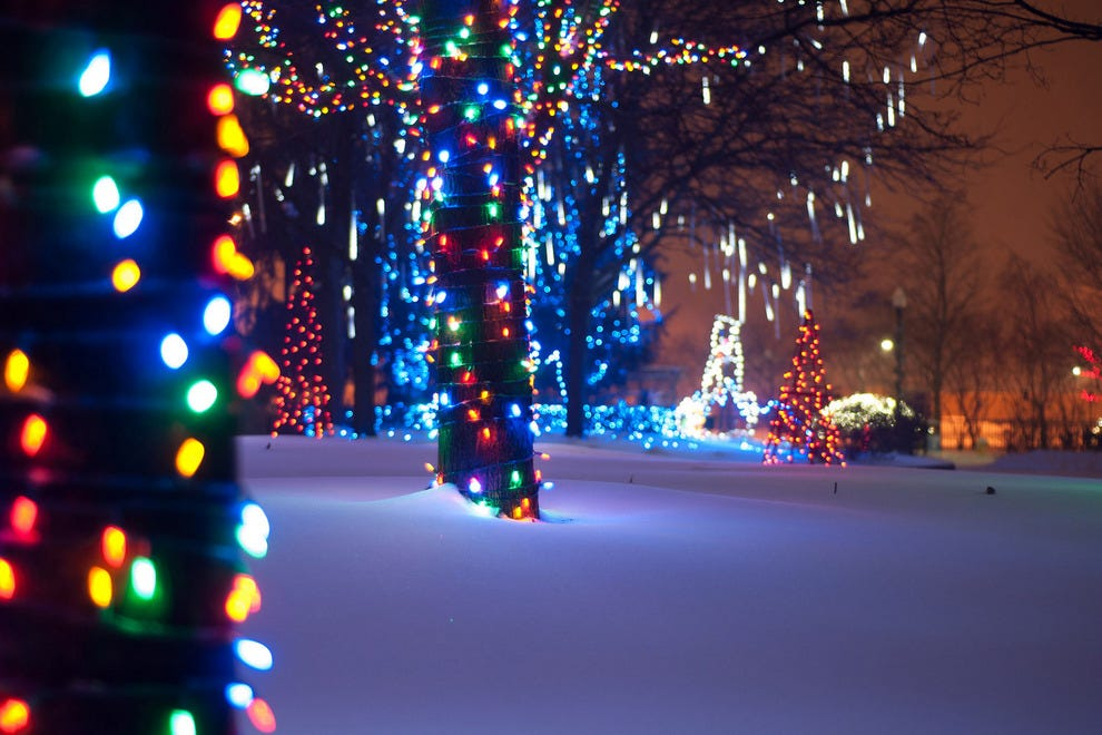 wild lights at the detroit zoo detroit - Toledo Zoo Lights Before Christmas