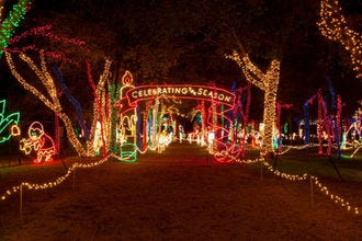 10 Ways To Let The Good Tidings Roll In Dallas This December