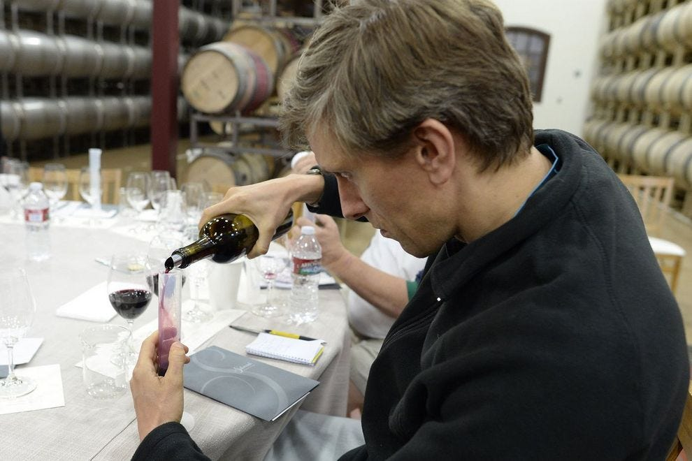 Adults learn about viticulture on the SF Weekender
