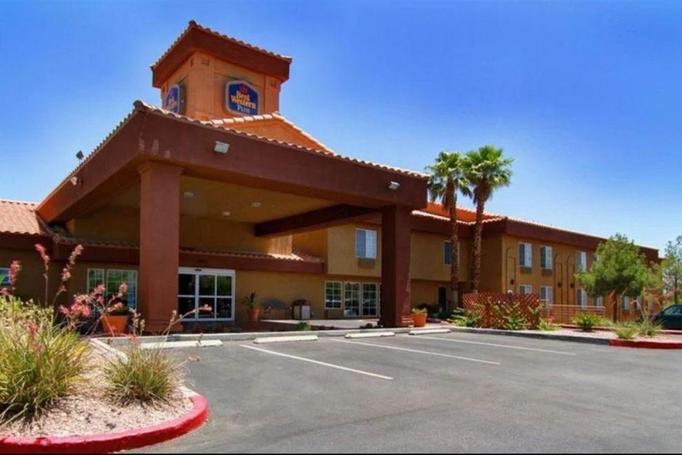 Best Dog Friendly Hotels In Las Vegas
