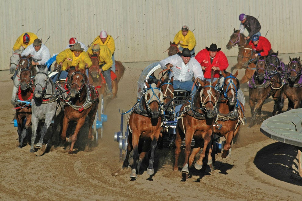 Every night, chuckwagon races rumble the fairgrounds at the Calgary Stampede
