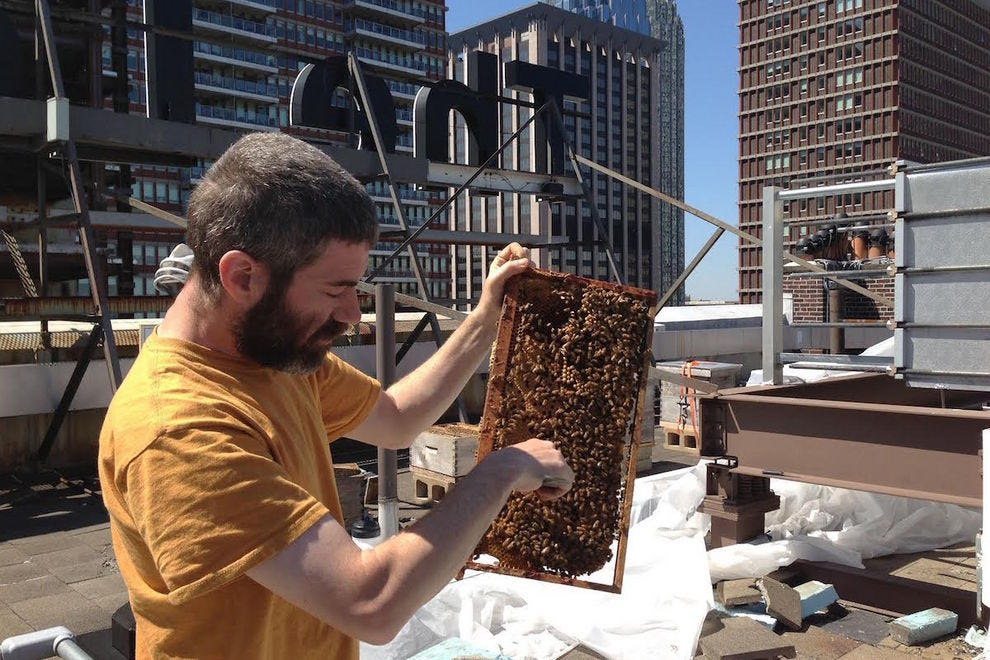 Beekeeper from Golden Rule Honey at Lenox Hotel