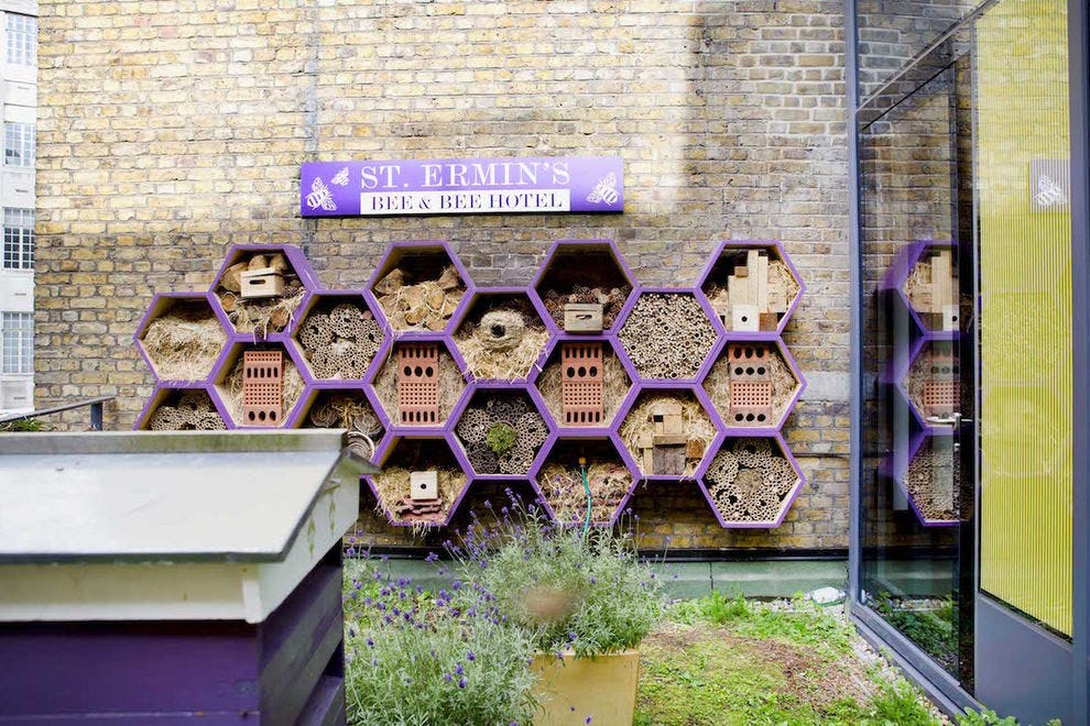 Bee and Bee Hotel at St. Ermin's Hotel