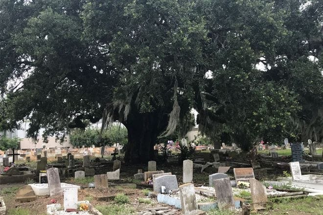 Holt Cemetery is a stop on Ask Arthur's Seldom Seen Cemeteries tour