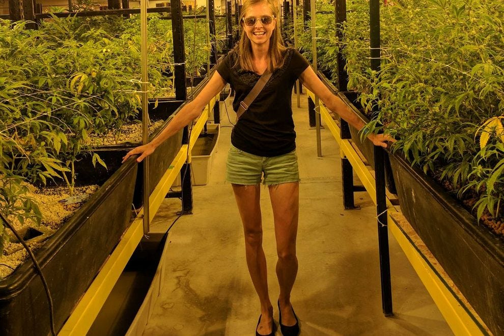 Everything You Want To Know About Marijuana Tourism In