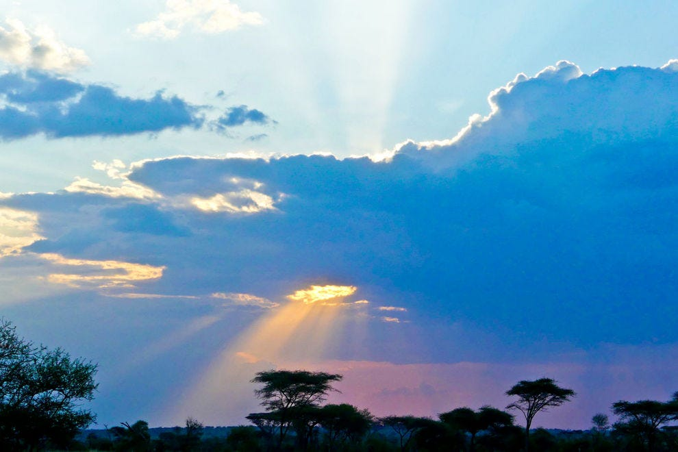 Sun starting to set in Serengeti National Park