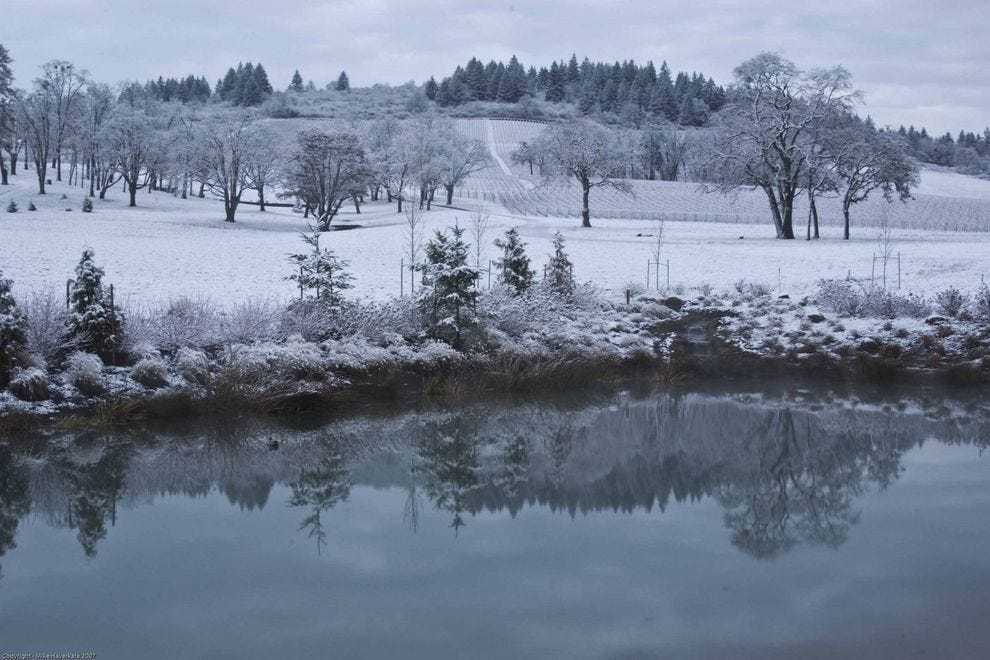 "Cozy into ""Cellar Season"" at welcoming Willamette Valley wineries like Stoller"