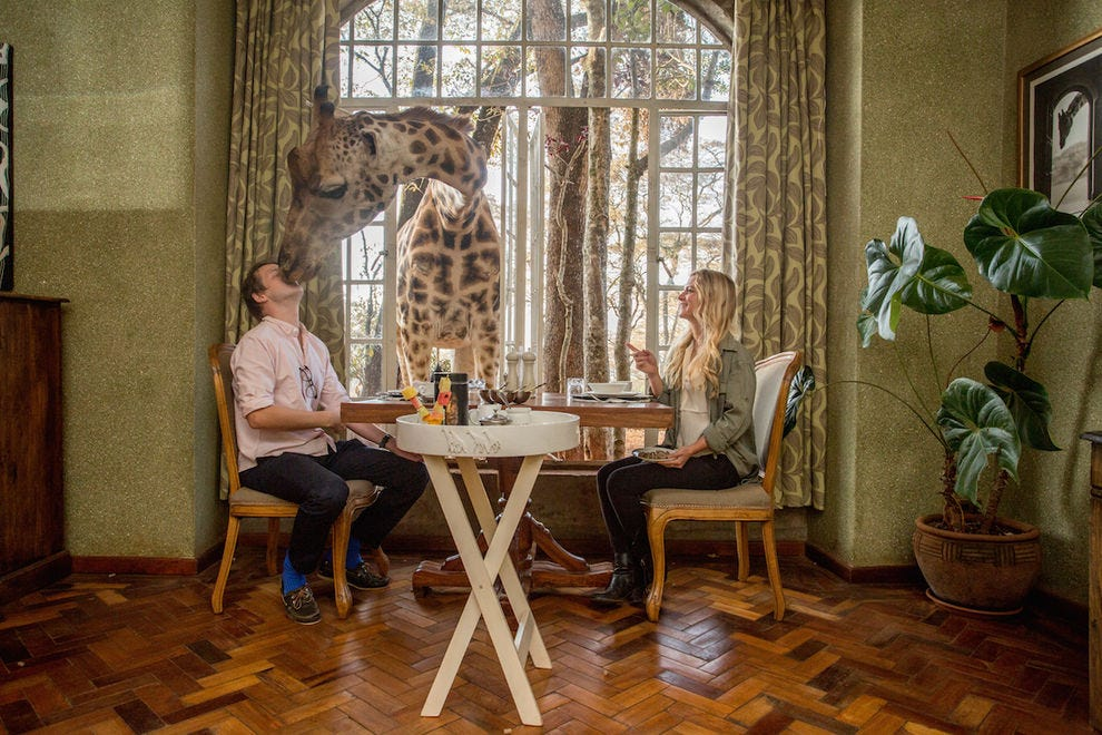 Have breakfast with the giraffes at Giraffe Manor