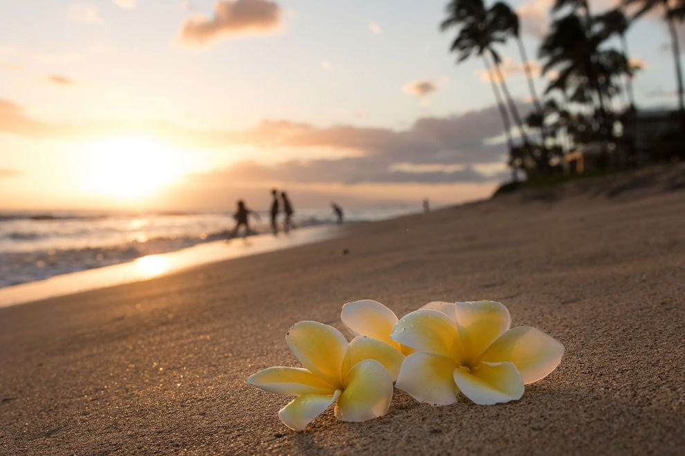 Black sand, white sand, pink sand and even green sand – Hawaii's got it all