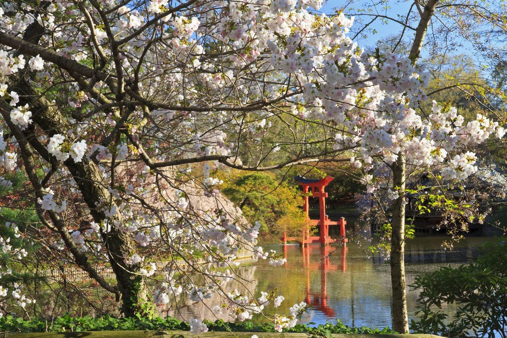 Shinto shrine among the blooms at Brooklyn Botanic Garden