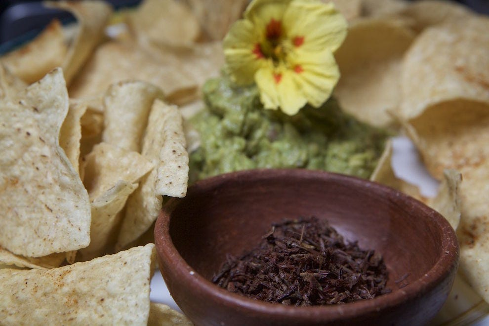 Try guacamole with chapulines at Zocalito
