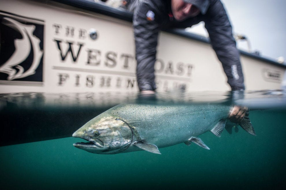 West Coast Fishing Club attracts acclaimed chefs and adventurers from around the world