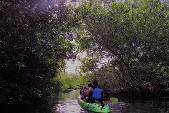 The Shack Kayak Tours